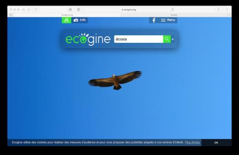 ecogine-ecran