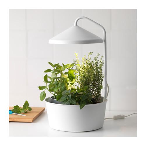 bittergurka-horticole-led