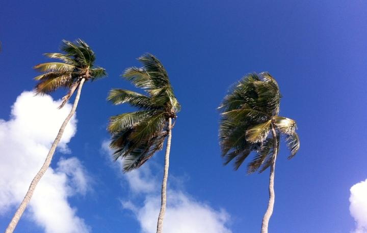 Aujourd'hui je rêve… des Antilles!